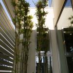 鉄骨住宅の実例-竹の塚IW邸-写真8